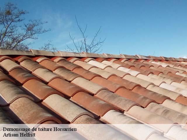 Entreprise démoussage de toiture à Horsarrieu tel: 05.33 ...