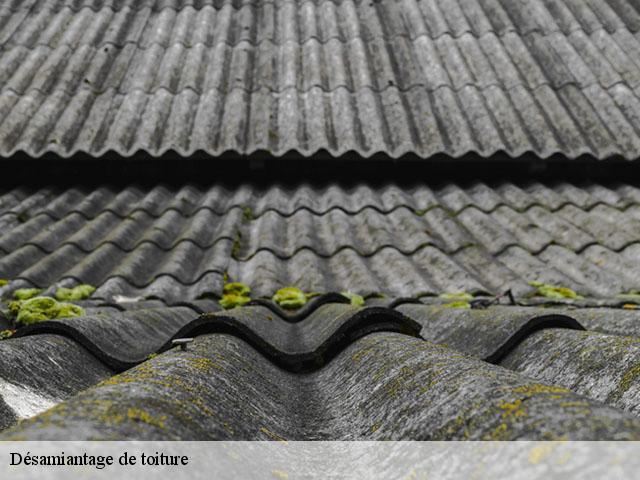 Entreprise désamiantage de toiture à Donzacq tel: 05.33.06.15.63