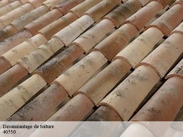 Entreprise désamiantage de toiture à Saint Michel Escalus tel: 05.33.06.15.63